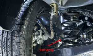 coil-spring